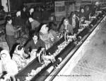 Εργάτριες σε συσκευαστήριο,1966.
