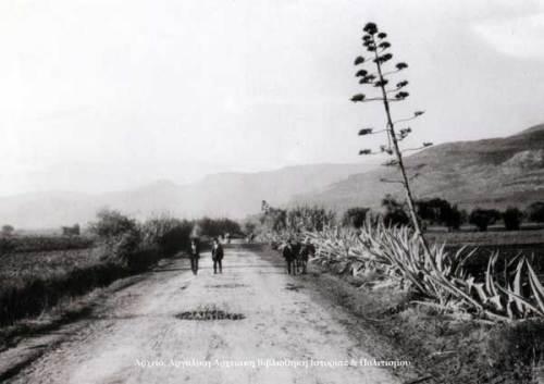 Ο δρόμος από το Ναύπλιο προς το Άργος, λίγο πριν φθάσουμε στην Τίρυνθα το 1922.