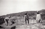 Λίχνισμα στο αλώνι 1930. Φωτογραφία ΈλληΠαπαδημητρίου.