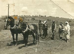 Όργωμα σε χωράφι μπροστά στη Σάντα Ρόζα στις 5 Μαΐου του 1955. Φωτογραφία από τον ιστότοπο «Γραφική παλιά Αλεξανδρούπολη».