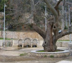 Κρήνη - Βρούστι Αργολίδας