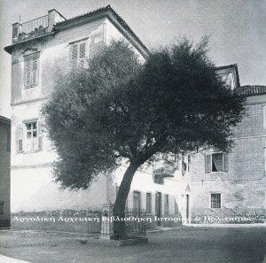 Η ελιά του Μηνιάτη στην πλατεία της Παναγίτσας. Δημοσιεύεται στο: Σέμνη Καρούζου, «Το Ναύπλιο», εκδ. Εμπορική Τράπεζα της Ελλάδος, 1979.